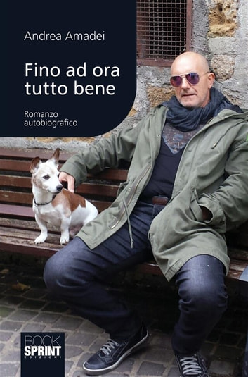 Fino ad ora tutto bene ebook by Andrea Amadei