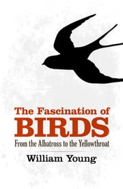 The Fascination of Birds - From the Albatross to the Yellowthroat ebook by William Young