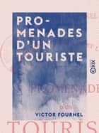 Promenades d'un touriste - Voyage en Hollande - Excursion en Savoie et en Suisse ebook by Victor Fournel