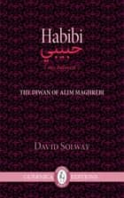Habibi ebook by David Solway