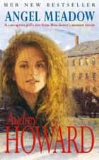 Angel Meadow ebook by Audrey Howard
