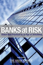 Banks at Risk - Global Best Practices in an Age of Turbulence ebook by Peter Hoflich