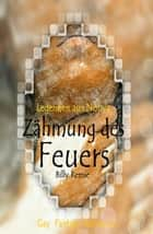 Zähmung des Feuers ebook by Billy Remie