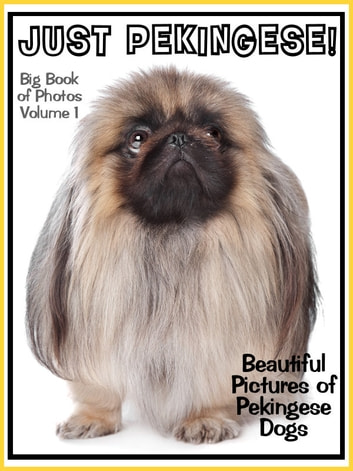 Just Pekingese Photos! Big Book of Pekingese Dog Breed Photographs & Adorable Pictures, Vol. 1 ebook by Big Book of Photos