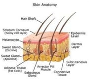 An Informative Guide About Basal Cell Carcinoma ebook by Jacki Waterman