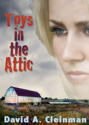 Toys In The Attic ebook by David Cleinman