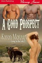 A Good Prospect ebook by Karen Mercury