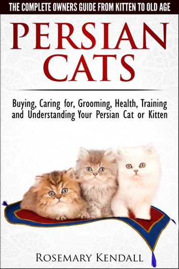 Persian Cats The Complete Owners Guide From Kitten To Old Age