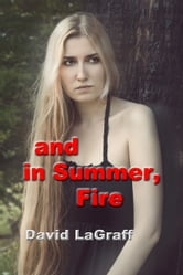 And In Summer Fire ebook by David LaGraff