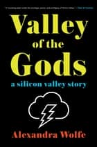 Valley of the Gods - A Silicon Valley Story ebook by Alexandra Wolfe