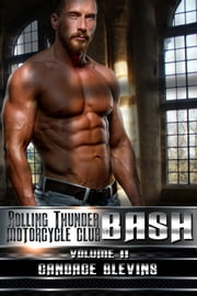 Bash, Volume II ebook by Candace Blevins
