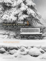Strokes of Genius 3 - Fresh Perspectives ebook by Rachel Rubin Wolf