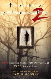 True Ghosts 2: More Haunting Tales from the Vaults of FATE Magazine ebook by David Godwin