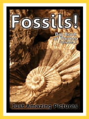 Just Fossil Photos! Big Book of Photographs & Pictures of Fossils, Vol. 1 ebook by Big Book of Photos