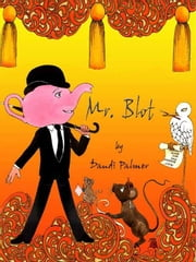 Mr Blot ebook by Dandi Palmer