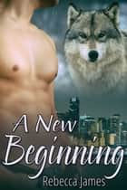 A New Beginning ebook by Rebecca James