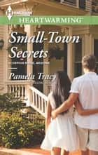 Small-Town Secrets ebook by Pamela Tracy