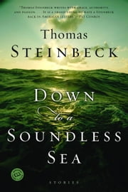 Down to a Soundless Sea ebook by Thomas Steinbeck