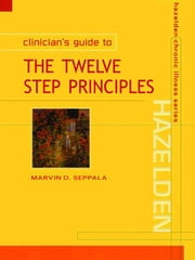 Clinician's Guide to Twelve Step Principles ebook by Seppala, Marvin D.