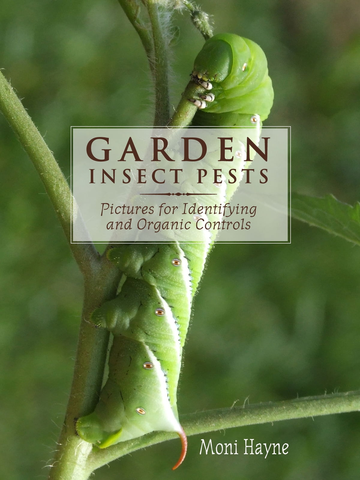 Garden Insect Pests of North America: Pictures for Identifying and Organic  Controls ebook by Moni Hayne - Rakuten Kobo