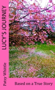 Lucy's Journey ebook by Patsy Whittle