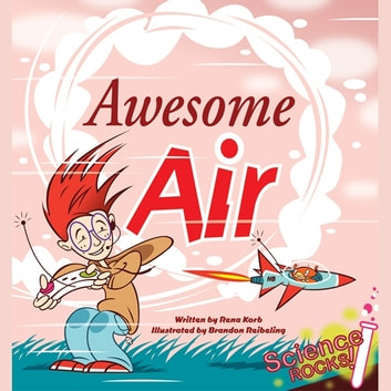 Awesome Air audiobook by Rena Korb