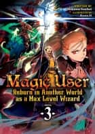 Magic User: Reborn in Another World as a Max Level Wizard (Light Novel) Vol. 3 ebook by Mikawa Souhei, Ryota-H