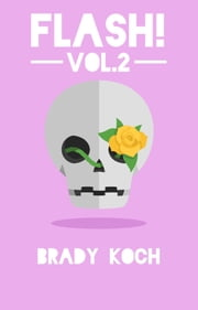 Flash! Vol. 2 ebook by Brady Koch