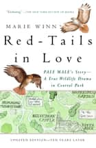 Red-Tails in Love - PALE MALE'S STORY--A True Wildlife Drama in Central Park ebook by Marie Winn