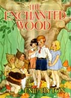 The Enchanted Wood (Faraway Tree #1) ebook by Enid Blyton
