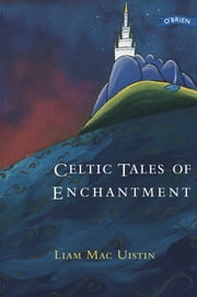 Celtic Tales of Enchantment ebook by Liam Mac Uistin,Russell Barnett,Shane Johnson