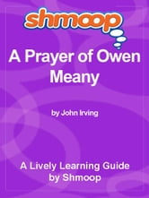Shmoop Literature Guide: A Prayer for Owen Meany ebook by Shmoop