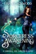 Sorceress Awakening ebook by Lisa Blackwood