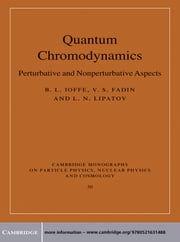 Quantum Chromodynamics - Perturbative and Nonperturbative Aspects ebook by B. L. Ioffe,V. S. Fadin,L. N. Lipatov