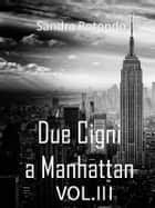 Due Cigni a Manhattan Vol III ebook by Sandra Rotondo
