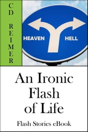 An Ironic Flash of Life (Flash Stories) ebook by C.D. Reimer