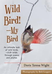 Wild Bird!: My Bird ebook by Doris Teresa Wight