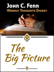 The Big Picture ebook by John C. Fenn