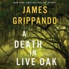 A Death in Live Oak - A Jack Swyteck Novel audiobook by James Grippando