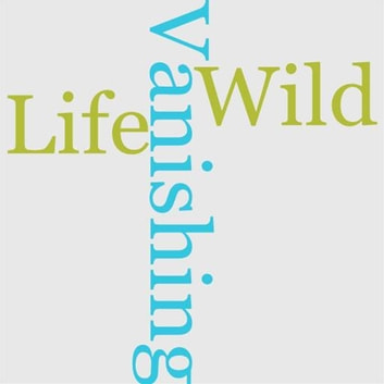 Our Vanishing Wild Life ebook by William T. Hornaday