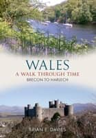 Wales A Walk Through Time - Brecon to Harlech ebook by Brian E. Davies
