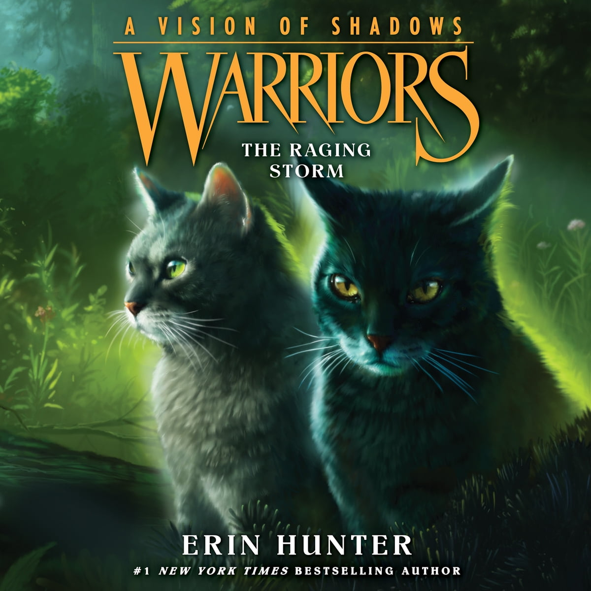 Warriors A Vision Of Shadows Book 1