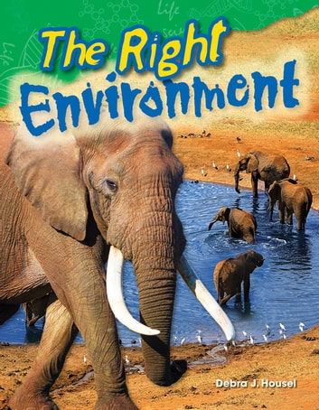 The Right Environment ebook by Debra J. Housel