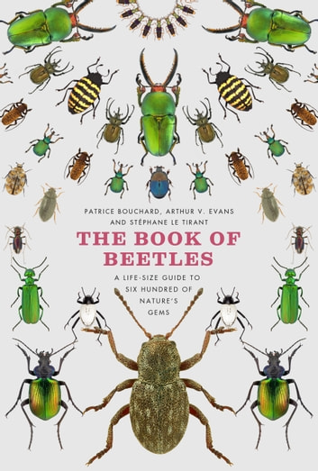 The Book of Beetles - A Life-Size Guide to Six Hundred of Nature's Gems ebook by Patrice Bouchard