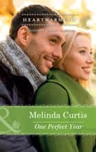 One Perfect Year (Mills & Boon Heartwarming) (A Harmony Valley Novel, Book 4) eBook by Melinda Curtis