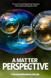 A Matter of Perspective ebook by John Ide