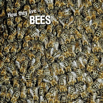 How they live... Bees - Learn All There Is to Know About These Animals! ebook by David Withrington,Ivan Esenko
