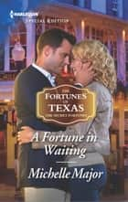 A Fortune in Waiting ebook by Michelle Major