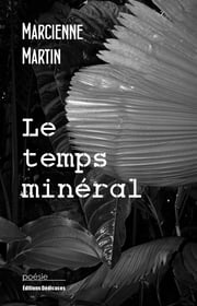 Le temps minéral ebook by Marcienne Martin