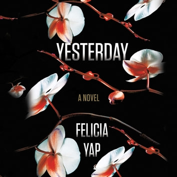 Yesterday audiobook by Felicia Yap